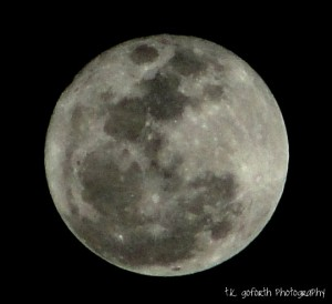 March 19 2011 super perigee moon