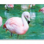 Flock of Flamingos phone case by T.K. Goforth